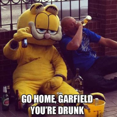 go-home-garfield-you-re-drunk